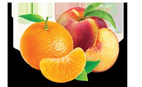 Tangerine Peach