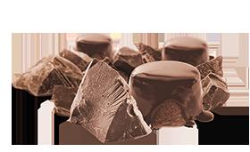 Flavor: Rich Chocolate