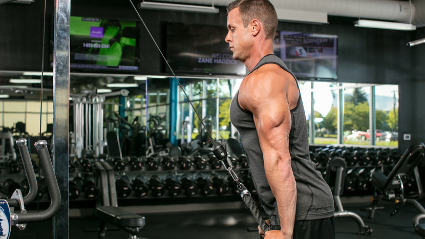 Nice Tri: What's Really Wrong With Your Triceps Training
