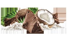 Chocolate Coconut