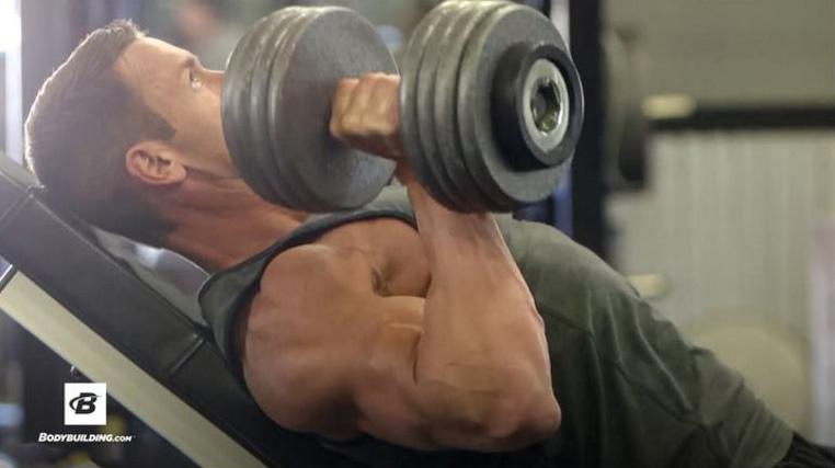 Best Chest Workout | Brandan Fokken